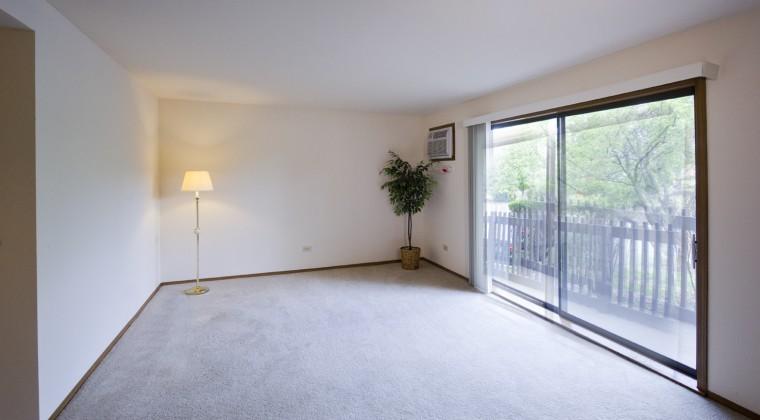 Living Room-1Bedroom Unit